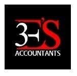 3E'S Accountants Ltd Logo