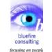 Bluefire Consulting Ltd Logo